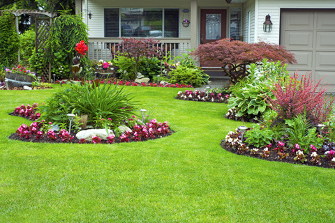 3 Tips for a Healthy Summer Lawn and Garden