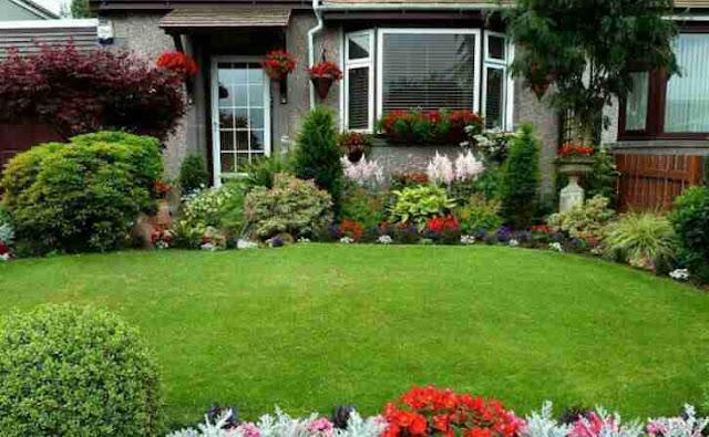 taman depan rumah minimalis lahan sempit