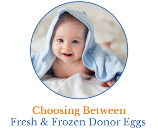 fresh-and-frozen-donor-eggs-cover.png