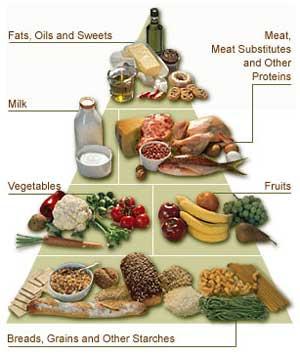 Subnutrição no Mundo