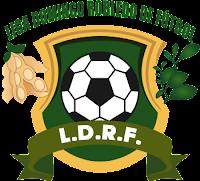 Escudo Liga Domingo Robledo de Fútbol