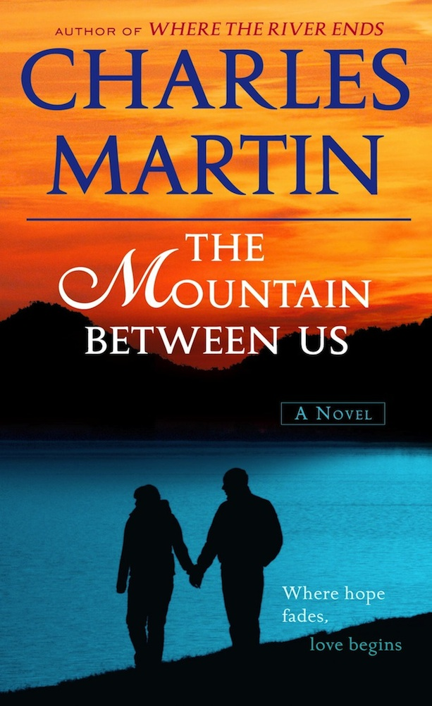 Poster do filme The Mountain Between Us