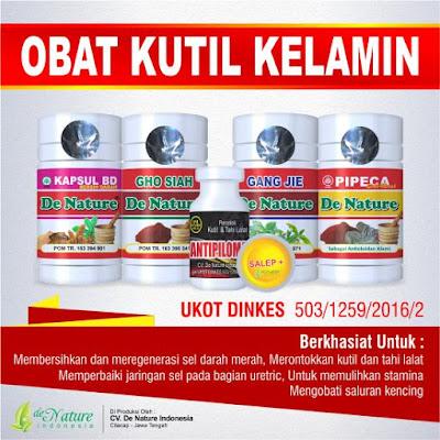 paket obat herbal untuk kutil kelamin