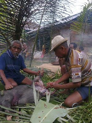 Proses Acara Sinasuan Dalam Perkawinan Adat Toraja (Aluk Todolo)