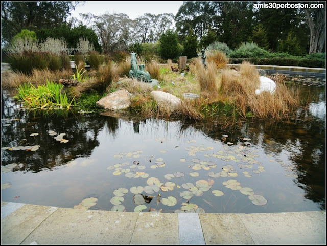 "Golden Gate Park: ""Pool of Enchantment"""