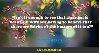 """Isn't it enough to see that a garden is beautiful without having to believe that there are fairies at the bottom of it too?""  ― Douglas Adams"