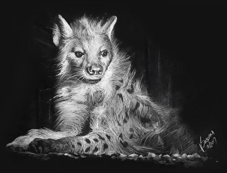 08-Hyena-Natalya-Bassani-www-designstack-co