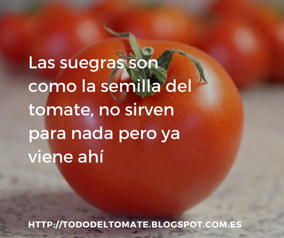 Refranes Frases Y Dichos Del Tomate Todotomate