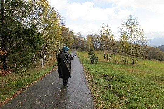 Droga przez Jaworze.