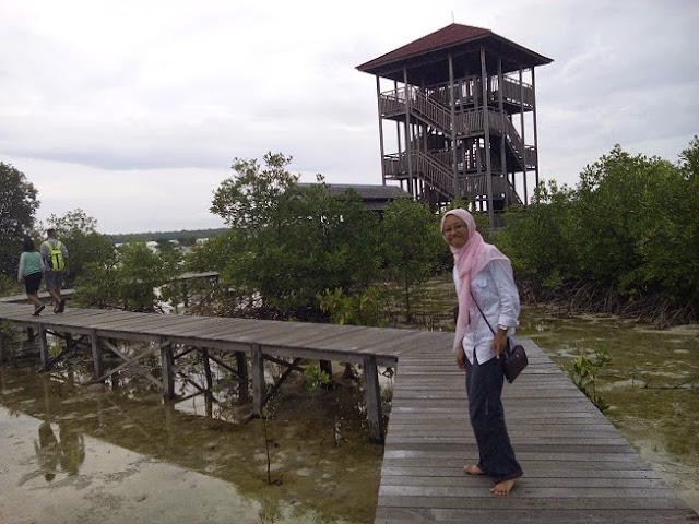 hutan mangrove Karimun