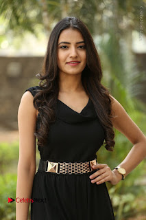 Telugu Actress Rukhsar Mir Stills in Black Long Dress at Aakatayi Movie First Look Launch  0037.JPG
