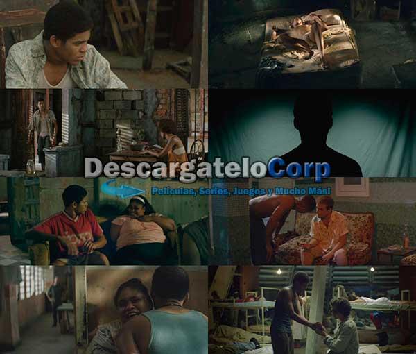El Rey de La Habana DVDRip Latino