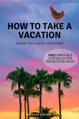 Chicken keepers on vacation.