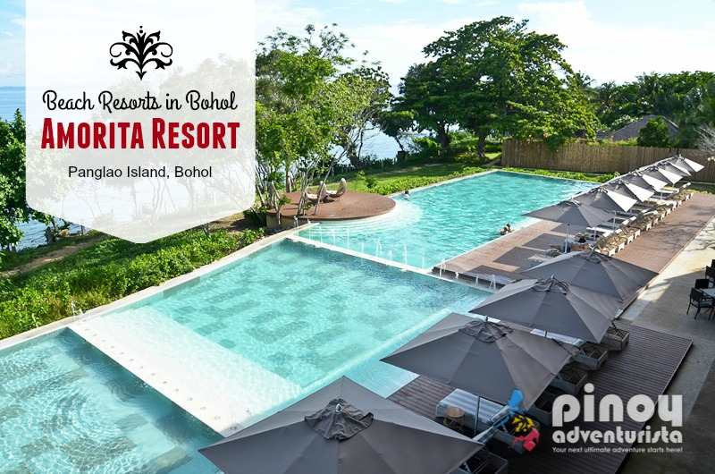 List Of Top Best Hotels And Resorts In Panglao Island Bohol