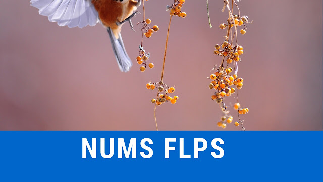 nums flps for entry test