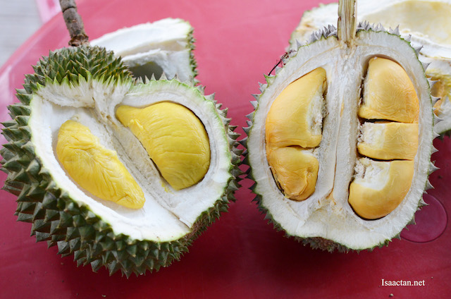 Musang King Durian on the left, compared with Black Thorn on the right