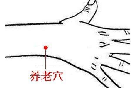 """手腕這個""""養老穴""""專治各種老年病!(頭暈眼花、耳鳴耳聾、肩臂酸痛)"""