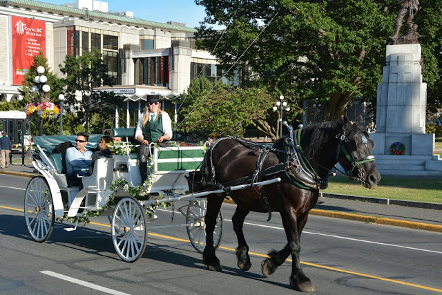 Victoria Island horse carriage