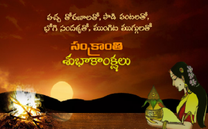 Happy Pongal Images HD 2018