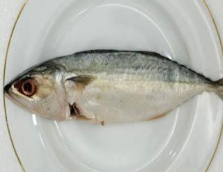 Foto Ikan Kembung Banyar Segar