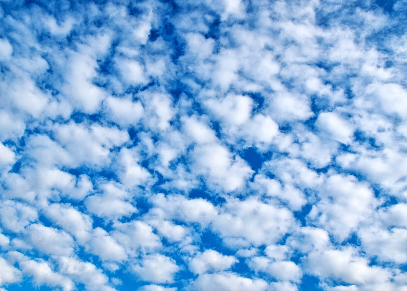 365 One Photo A Day Altocumulus Clouds