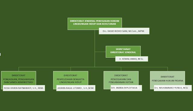 struktur organisasi ditjen PHLHK KLHK