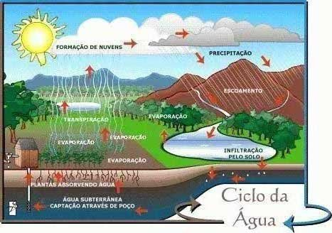 Resultado de imagem para ciclo da água