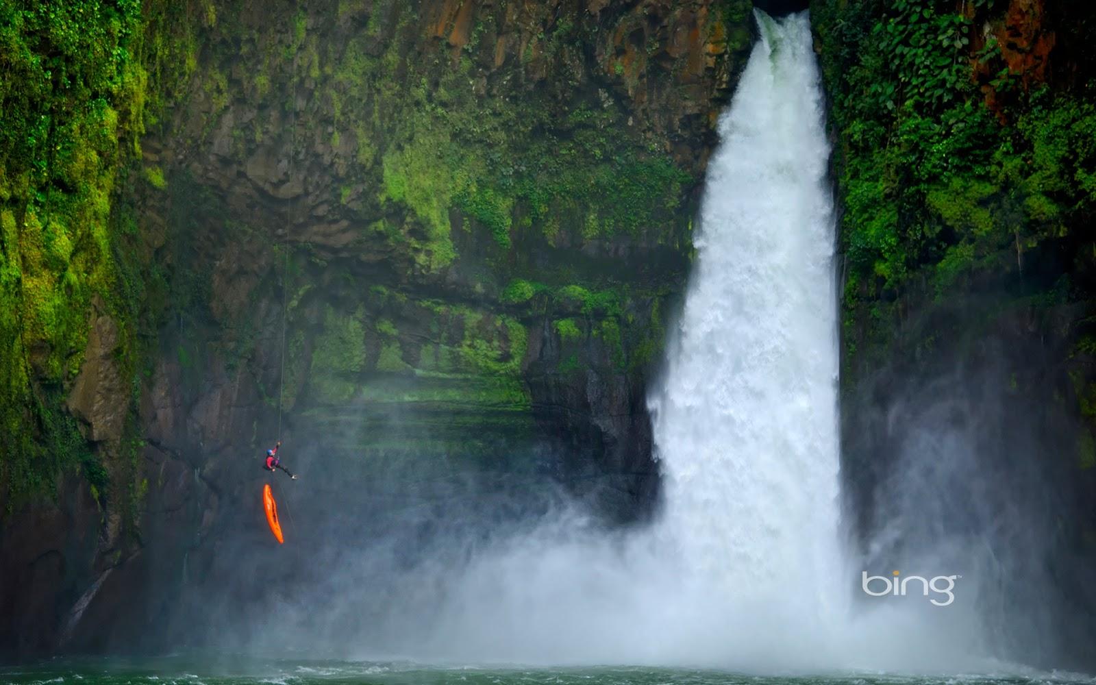 Rainforest Wallpapers