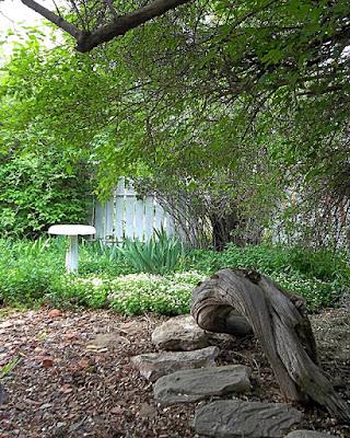 Garden scene with birdbath