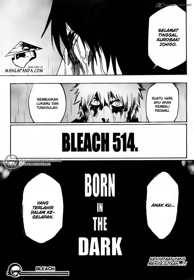 Bleach page 17