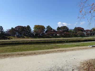 【京都府】京都府立植物園ウォーキング(菊花展) 加茂川