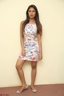 Nishi Ganda stunning cute in Flower Print short dress at Tick Tack Movie Press Meet March 2017 035.JPG