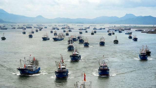 Diputado Hernández exige fiscalización por presencia de barcos asiáticos en costas chilenas