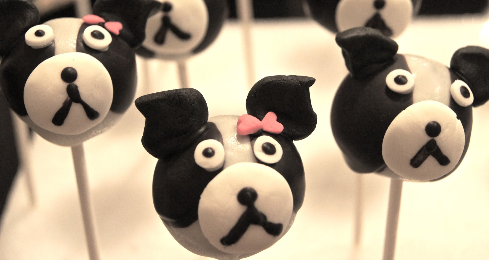 Project Sweet Tooth Boston Terrier Cake Pops
