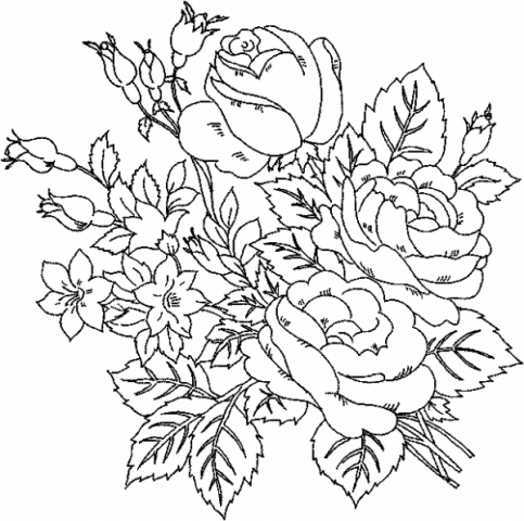 Pictures Of Flowers For Colouring