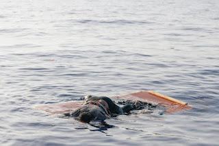 Inmigración. Cristina Cattaneo, la forense que trata de poner nombre a los inmigrantes ahogados en su viaje a Europa
