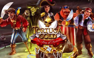 Тортуга пиратский остров игровые автоматы гемблинг в испании
