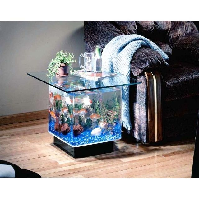 Jenis Kaca Aquarium Terbaik Dengan Harga Murah