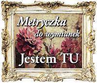 http://misiowyzakatek.blogspot.com/2015/07/metryczka.html