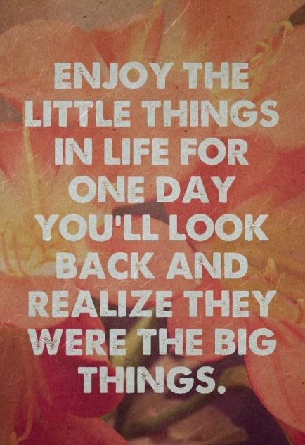 Enjoy the little things in life for one day you'll look back and realize they were the big things.