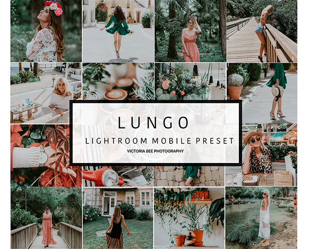Mobile Lightroom Preset LUNGO - ANDROID AR