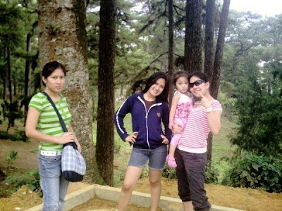 Pine-trees-in-Baguio