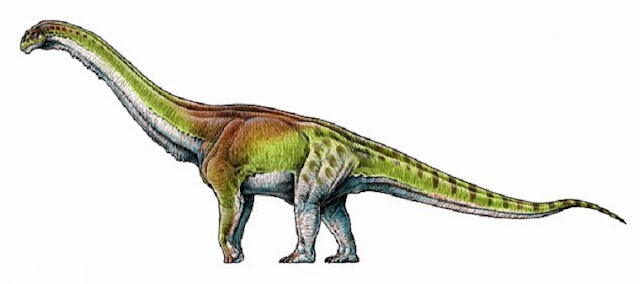 Patagotitan mayorum may be biggest creature ever to have walked the Earth