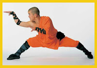 Breaking Down Snake Style Kung Fu