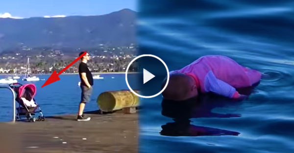 This baby is peacefully sleeping on the dock! What happened next was shocking!