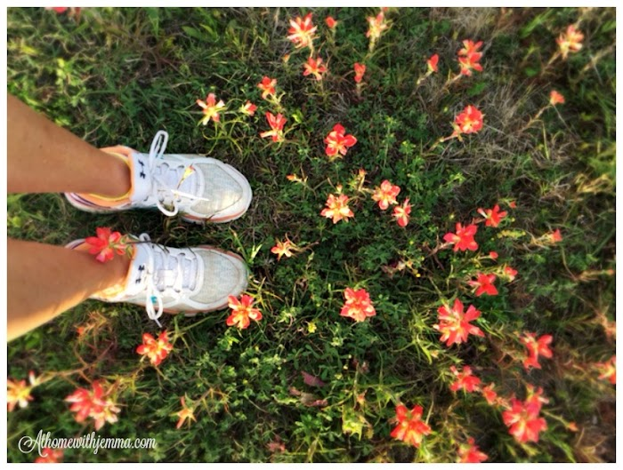 Walking With Wildflowers & Giveaway Announcement