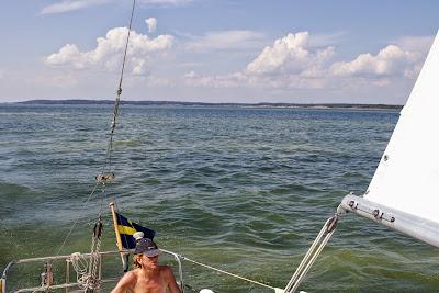 Lotta Löfwall seglar genom ett algblommande Östersjön