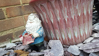 Herb the Gnome