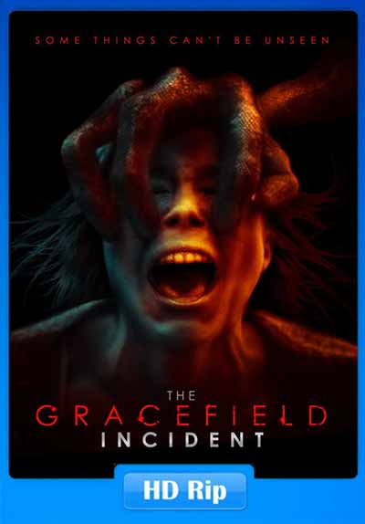 The Gracefield Incident 2017 250MB WEB-DL 480p x264 Poster