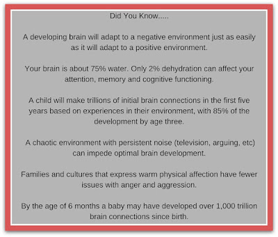 Brain Insights - www.Braininsightsonline.com